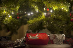Gifts under Christmas tree Stock Images