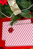 Gifts Under Tree Far Stock Photo