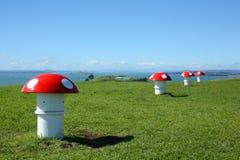 Giftsvampluftlufthål på Mt Victoria, Auckland Arkivfoton