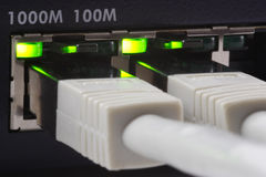 Gigabit Plugged. Close-up of a gigabit switch and two plugged cat6 network cables Royalty Free Stock Photos