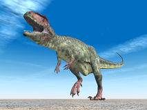 Giganotosaurus de dinosaure Image stock