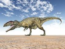 Giganotosaurus del dinosaurio Imagen de archivo