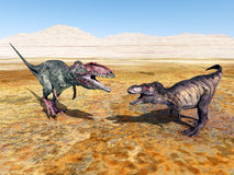 Giganotosaurus and Tyrannosaurus Rex Stock Images