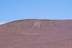 Gigant Atacama, Gigante De Tarapaca, wielki petroglif na skalistym wychodzie w Atacama pustyni, Tarapaca region Fotografia Stock