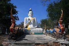 Gigant Buddha ochraniający smokami zdjęcia royalty free