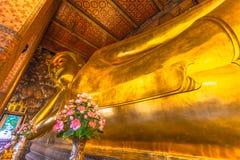 gigant opiera złotego dużego Buddha zdjęcie royalty free