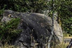 gigant skała Obraz Stock