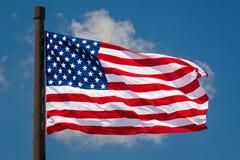 Gigant USA flaga komarnicy Obraz Royalty Free
