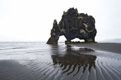 gigant zwierzęca skała Obrazy Stock