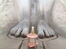 Gigante mas pés delicados Foto de Stock