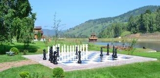 Gigantes del ajedrez Fotografía de archivo libre de regalías