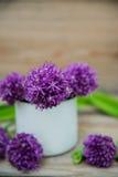 Giganteum dell'allium, fiore viola Fotografia Stock Libera da Diritti