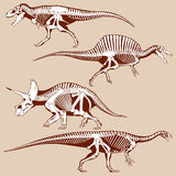 Gigantic dinosaurus silhouettes with skeletons vector set Stock Photos