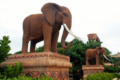 Gigantic statues of elephants in Lost CitySouth Africa royalty free stock photos