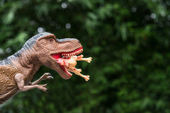 Gigantic tyrannosaurus catches a dinosaur Royalty Free Stock Photos