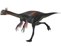 Gigantoraptor Royalty Free Stock Images