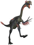 Gigantoraptor Stock Photo