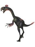 Gigantoraptor Stock Photography