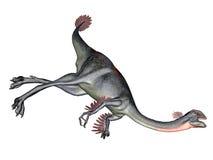 Gigantoraptor dinosaur Stock Photos