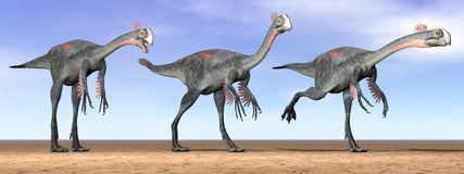 Gigantoraptor dinosaurs in the desert - 3D render Royalty Free Stock Images