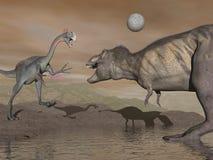 Gigantoraptor e tirannosauro - 3D rendono Immagine Stock