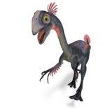 Gigantoraptor gigante do dinossauro Fotos de Stock