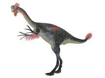 Gigantosaurus Royalty Free Stock Image