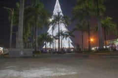 Gigantyczna choinka Tagum miasto Zdjęcia Royalty Free
