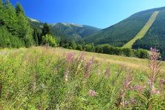 Gigantyczna góry sceneria obrazy stock
