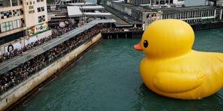 Gigantyczna Gumowa kaczka patrzeje ludzi w Hong Kong obrazy stock