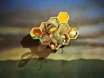 Gigantyczna pszczoła w swój rój rzeźbie w Parkowym Jaime Duque ilustracja wektor