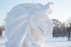 Gigantyczna twarz z długie włosy robić śnieg Zdjęcia Stock