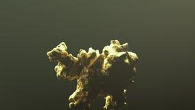 Gigantyczna złocista bryłka Obrazy Stock