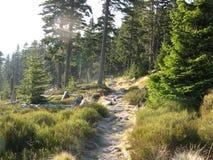 Gigantyczne góry w Polska i czechu Fotografia Royalty Free