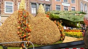 Gigantyczne Tulipanowe żarówki Zdjęcie Royalty Free