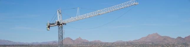 Gigantyczny żuraw z pustynnym halnym tłem, Scottsdale, Az Zdjęcia Royalty Free