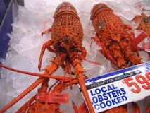 Gigantyczny homar dla sprzedaży w Rybim rynku Fotografia Stock