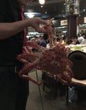 Gigantyczny królewiątko krab żywy obraz stock