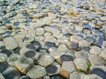 Gigantyczny ` s droga na grobli, Antrim Co , Północny - Ireland, UK, Europa zdjęcie stock