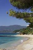 Gigaro海滩,法国海滨,南法国,欧洲 免版税库存图片