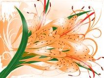 gigli illustrazione vettoriale