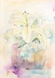 Gigli acquerelli Immagine Stock