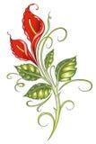 Gigli, fiori, calle Immagini Stock Libere da Diritti