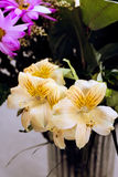 Gigli gialli in un vaso Fotografia Stock