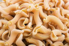 Gigli Pasta Stock Photo