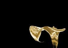 Giglio dell'oro Fotografia Stock Libera da Diritti