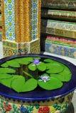 Giglio di acqua e parete ornamentale del mosaico Immagini Stock Libere da Diritti