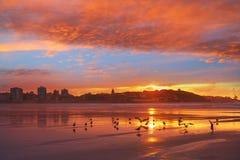 Gijon在圣洛伦佐海滩阿斯图里亚斯的地平线日落 免版税图库摄影
