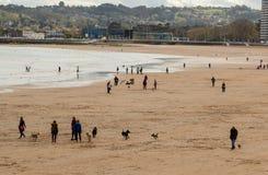 Gijon Asturias, Spanien, April 09, 2019 personer tycker om dagen på stranden, med deras husdjur royaltyfri fotografi