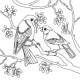 Gil pary wektoru ilustracja ilustracji